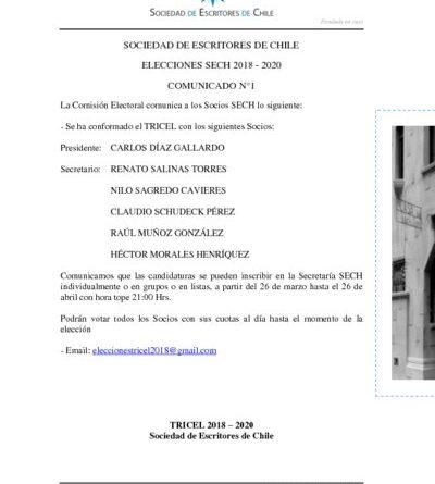 thumbnail of COMUNICADO ELECCIONES TRICEL N°1 2018-2020